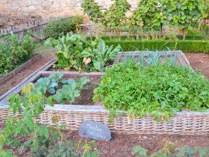 le-jardin-potager